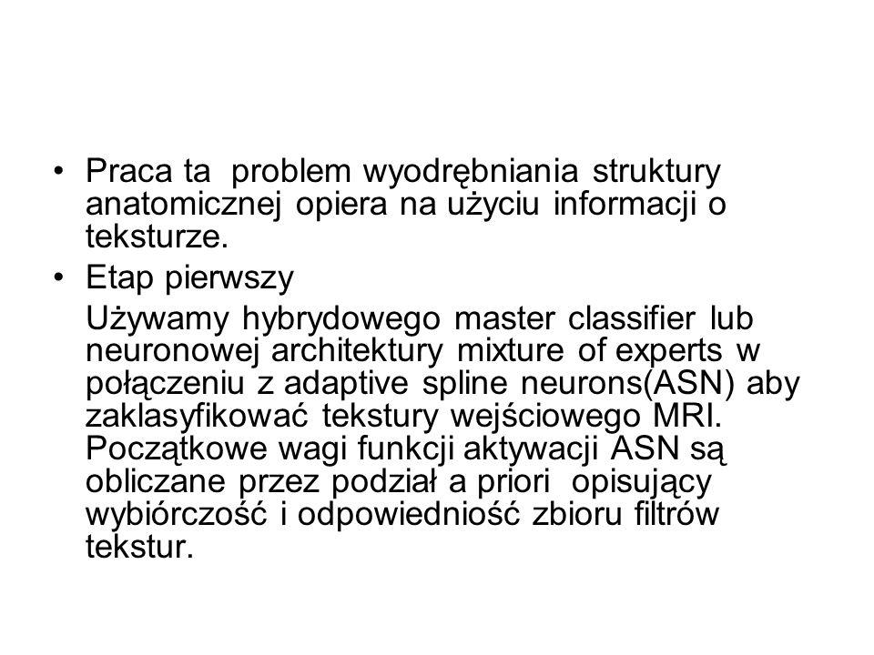 Praca ta problem wyodrębniania struktury anatomicznej opiera na użyciu informacji o teksturze.