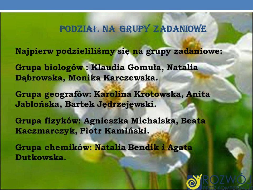 PODZIA Ł NA GRUPY ZADANIOWE Najpierw podzieliliśmy się na grupy zadaniowe: Grupa biologów : Klaudia Gomuła, Natalia Dąbrowska, Monika Karczewska. Grup