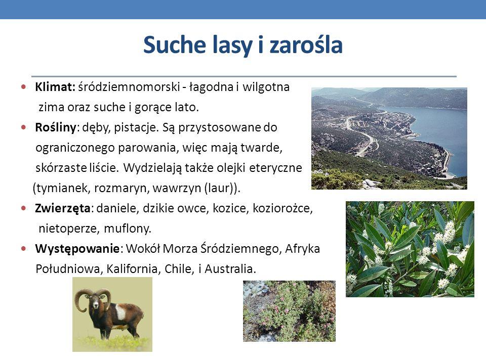 Suche lasy i zarośla Klimat: śródziemnomorski - łagodna i wilgotna zima oraz suche i gorące lato. Rośliny: dęby, pistacje. Są przystosowane do ogranic