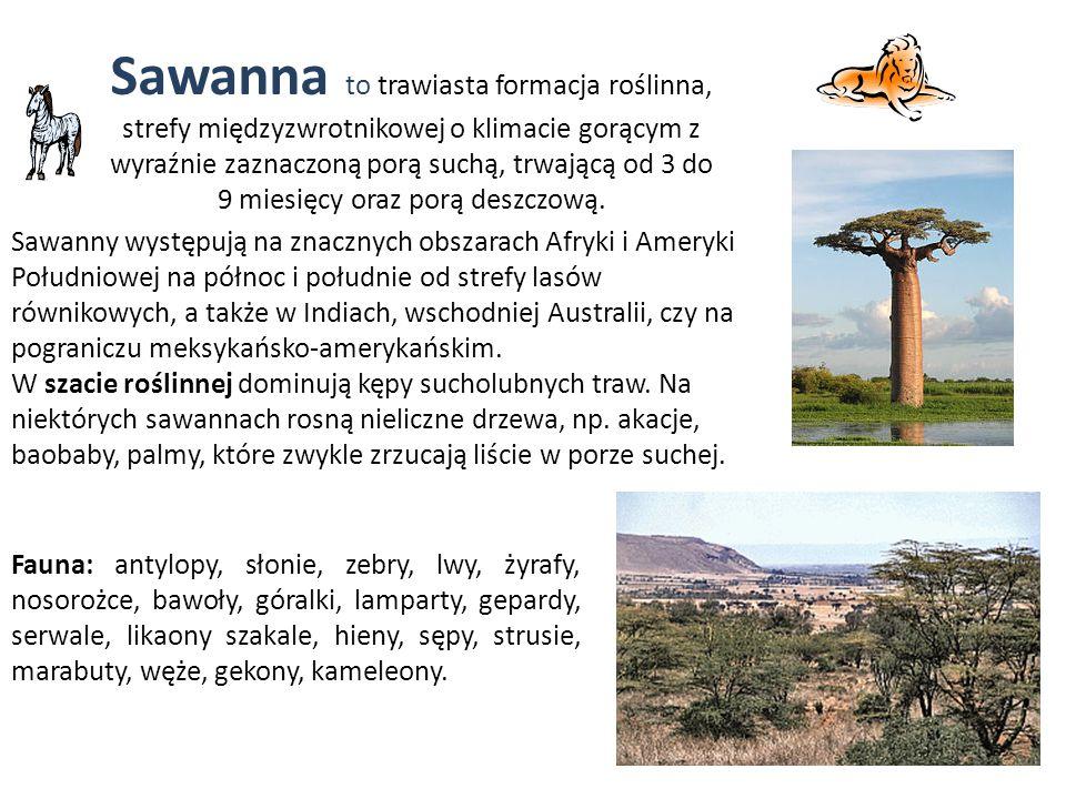 Sawanna to trawiasta formacja roślinna, strefy międzyzwrotnikowej o klimacie gorącym z wyraźnie zaznaczoną porą suchą, trwającą od 3 do 9 miesięcy ora