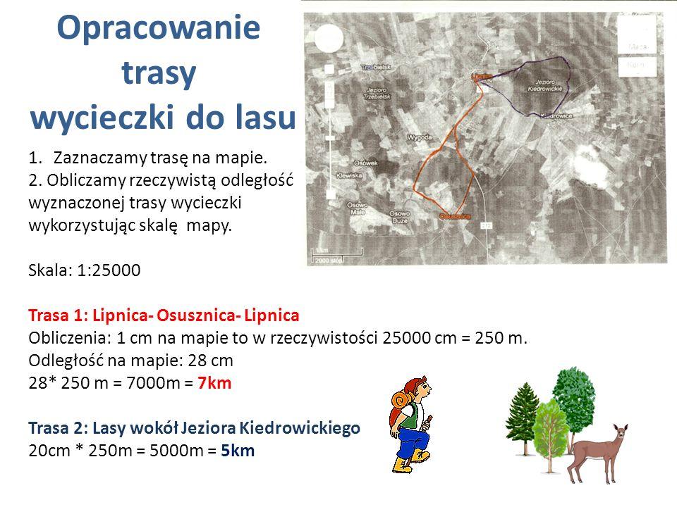 Opracowanie trasy wycieczki do lasu 1.Zaznaczamy trasę na mapie. 2. Obliczamy rzeczywistą odległość wyznaczonej trasy wycieczki wykorzystując skalę ma