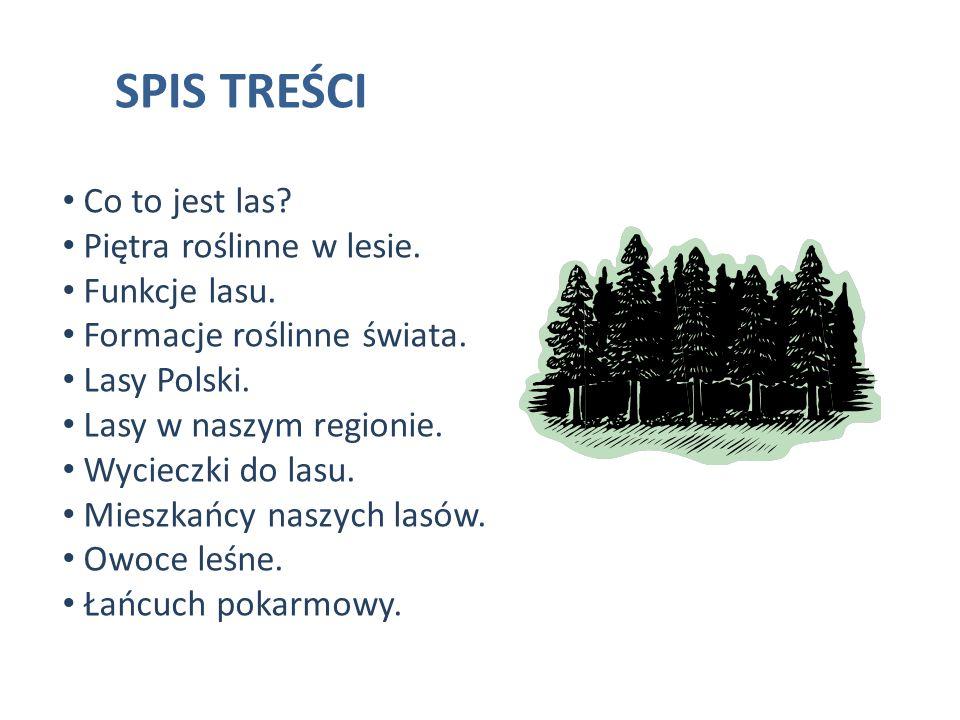 SPIS TREŚCI Co to jest las? Piętra roślinne w lesie. Funkcje lasu. Formacje roślinne świata. Lasy Polski. Lasy w naszym regionie. Wycieczki do lasu. M