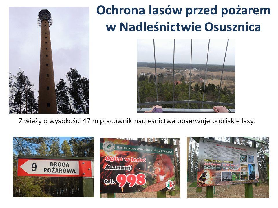 Ochrona lasów przed pożarem w Nadleśnictwie Osusznica Z wieży o wysokości 47 m pracownik nadleśnictwa obserwuje pobliskie lasy.