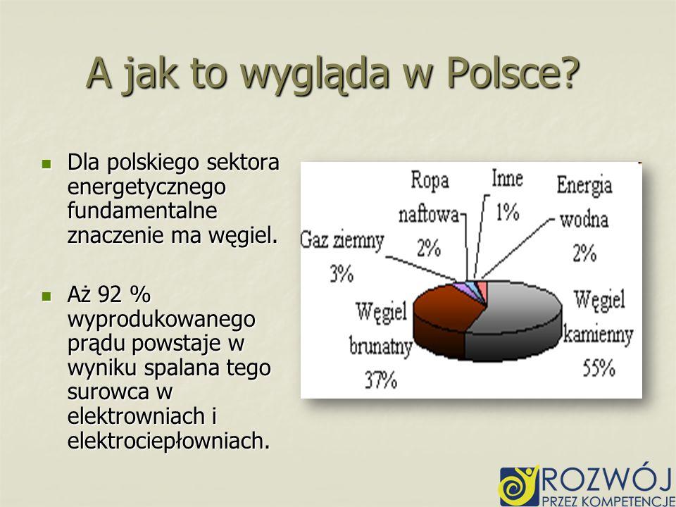 A jak to wygląda w Polsce? Dla polskiego sektora energetycznego fundamentalne znaczenie ma węgiel. Dla polskiego sektora energetycznego fundamentalne
