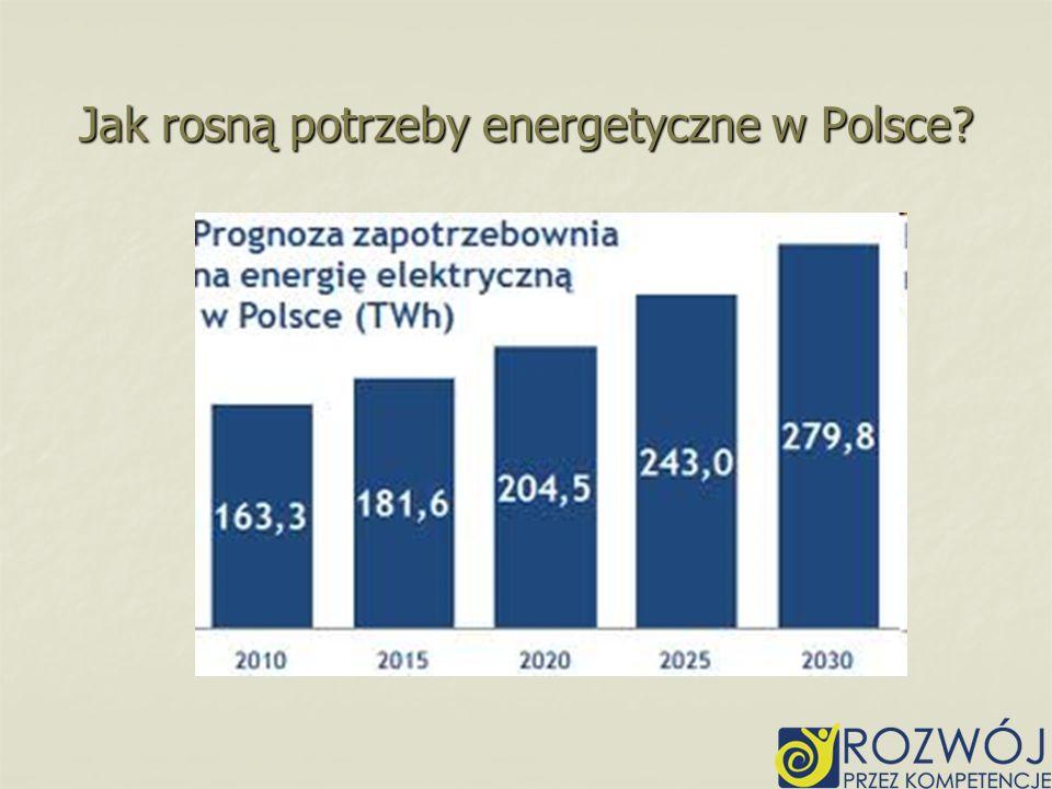 Jak rosną potrzeby energetyczne w Polsce?