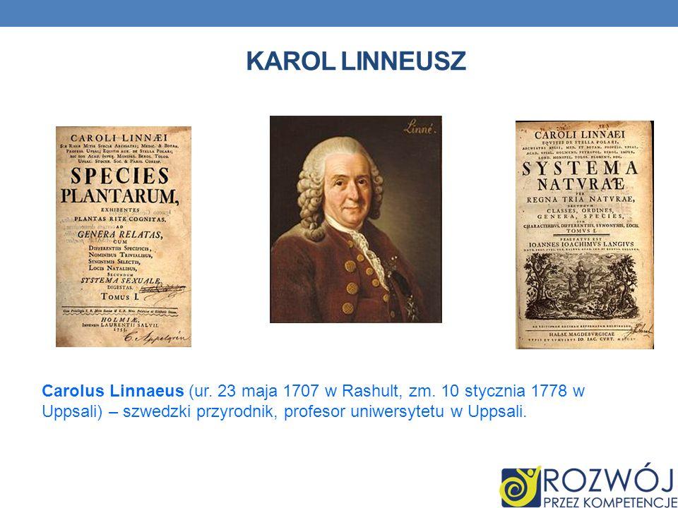 KAROL LINNEUSZ Carolus Linnaeus (ur. 23 maja 1707 w Rashult, zm. 10 stycznia 1778 w Uppsali) – szwedzki przyrodnik, profesor uniwersytetu w Uppsali.