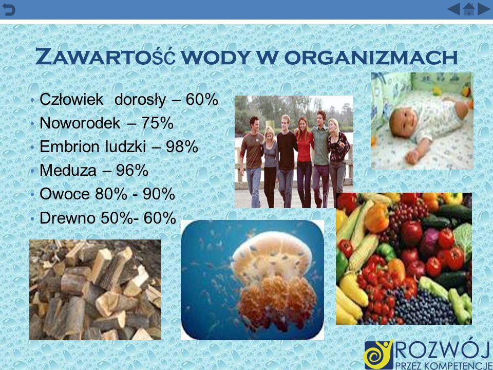 Zawarto ść wody w organizmach Człowiek dorosły – 60% Noworodek – 75% Embrion ludzki – 98% Meduza – 96% Owoce 80% - 90% Drewno 50%- 60%