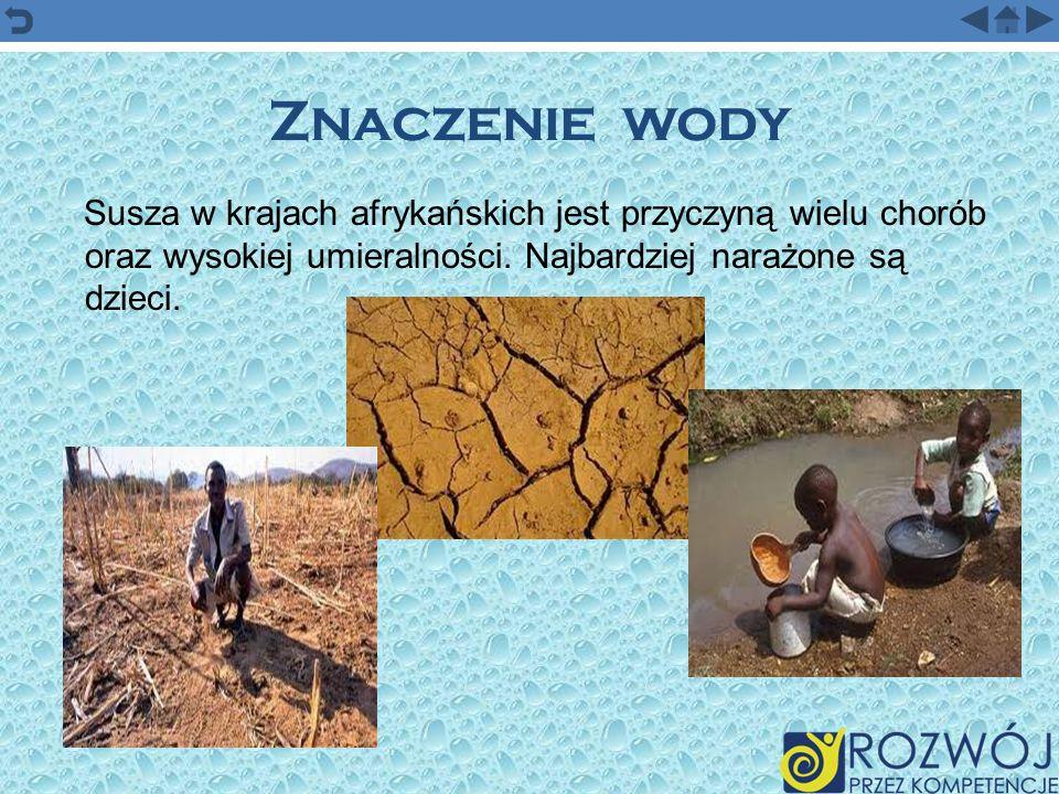 Znaczenie wody Susza w krajach afrykańskich jest przyczyną wielu chorób oraz wysokiej umieralności. Najbardziej narażone są dzieci.