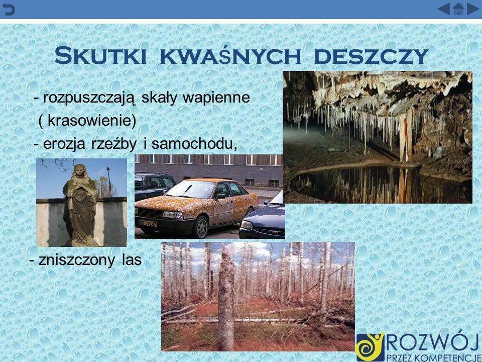 Skutki kwa ś nych deszczy - rozpuszczają skały wapienne ( krasowienie) - erozja rzeźby i samochodu, - zniszczony las
