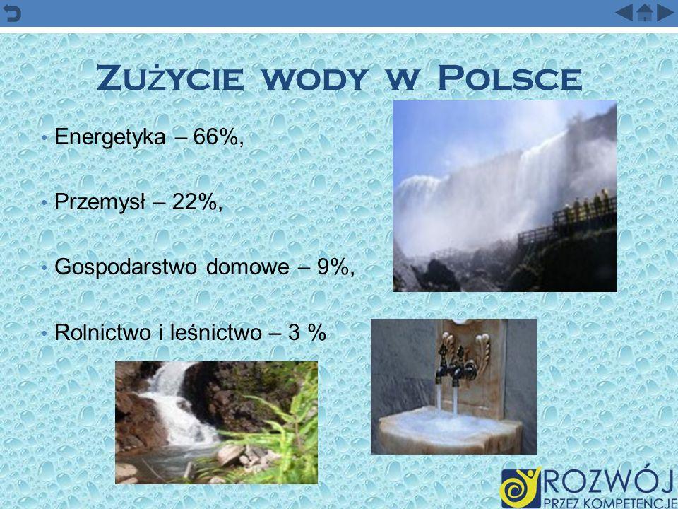 Zu ż ycie wody w Polsce Energetyka – 66%, Przemysł – 22%, Gospodarstwo domowe – 9%, Rolnictwo i leśnictwo – 3 %
