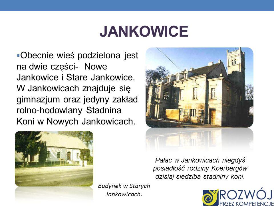 JANKOWICE Obecnie wieś podzielona jest na dwie części- Nowe Jankowice i Stare Jankowice. W Jankowicach znajduje się gimnazjum oraz jedyny zakład rolno