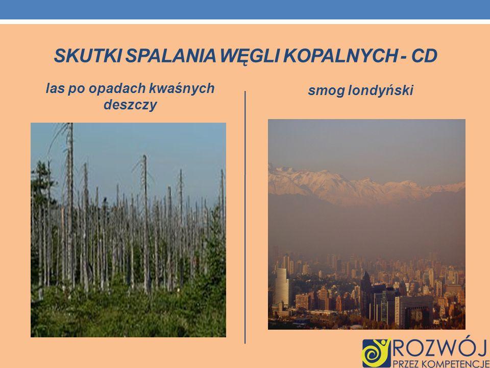 SKUTKI SPALANIA WĘGLI KOPALNYCH - CD las po opadach kwaśnych deszczy smog londyński