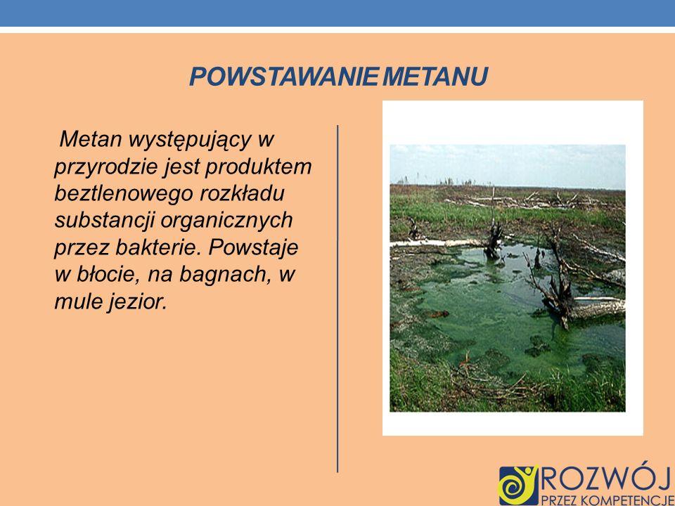 POWSTAWANIE METANU Metan występujący w przyrodzie jest produktem beztlenowego rozkładu substancji organicznych przez bakterie. Powstaje w błocie, na b