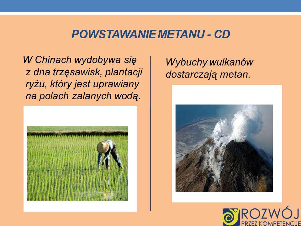 POWSTAWANIE METANU - CD W Chinach wydobywa się z dna trzęsawisk, plantacji ryżu, który jest uprawiany na polach zalanych wodą. Wybuchy wulkanów dostar
