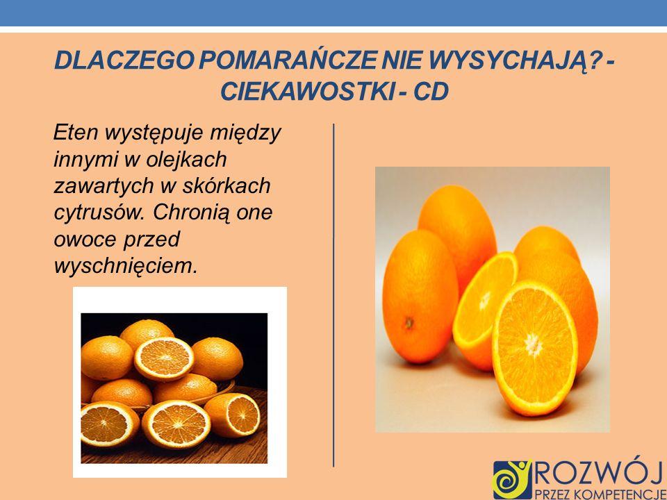 DLACZEGO POMARAŃCZE NIE WYSYCHAJĄ? - CIEKAWOSTKI - CD Eten występuje między innymi w olejkach zawartych w skórkach cytrusów. Chronią one owoce przed w