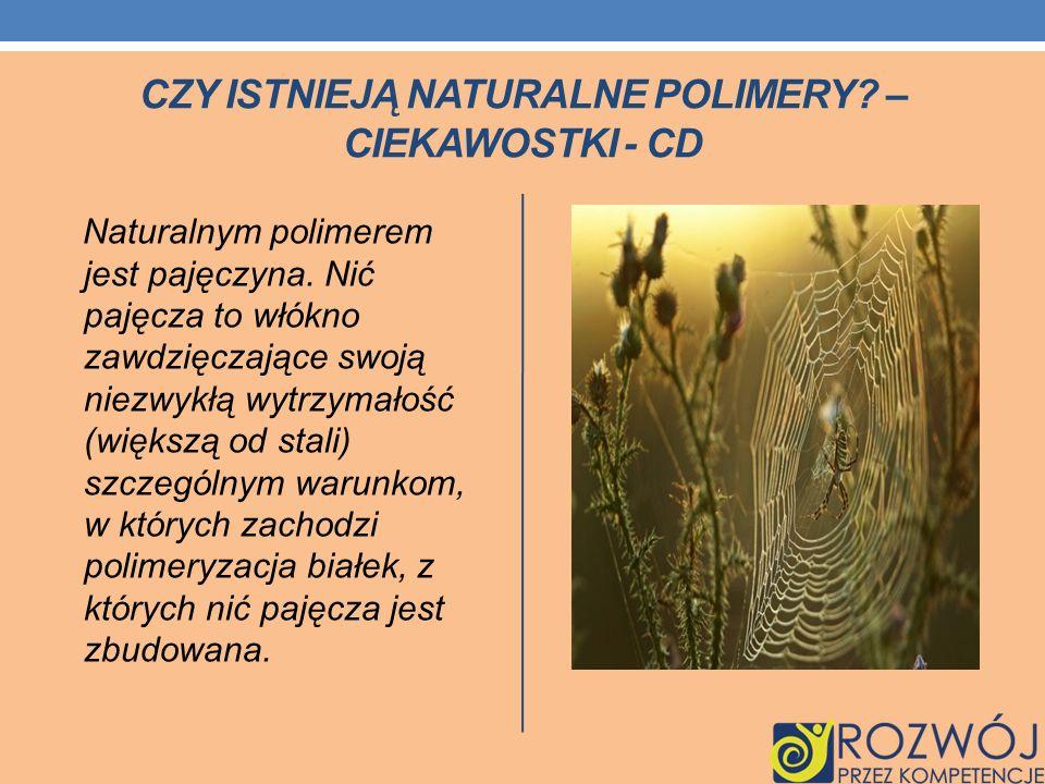 CZY ISTNIEJĄ NATURALNE POLIMERY? – CIEKAWOSTKI - CD Naturalnym polimerem jest pajęczyna. Nić pajęcza to włókno zawdzięczające swoją niezwykłą wytrzyma