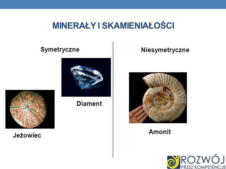 MINERAŁY I SKAMIENIAŁOŚCI Symetryczne Niesymetryczne Jeżowiec Amonit Diament