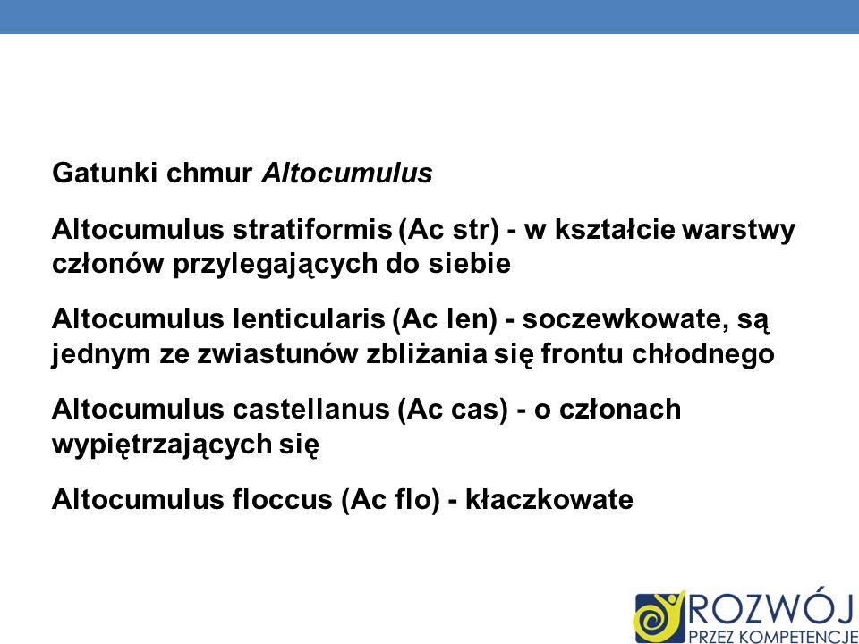 Gatunki chmur Altocumulus Altocumulus stratiformis (Ac str) - w kształcie warstwy członów przylegających do siebie Altocumulus lenticularis (Ac len) -