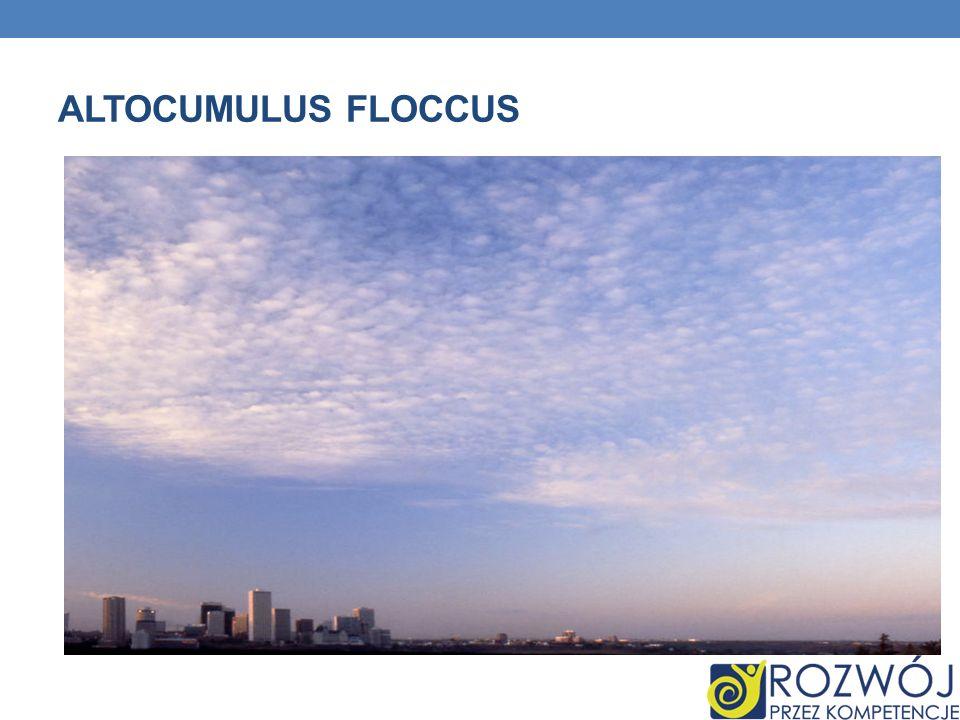 ALTOCUMULUS FLOCCUS