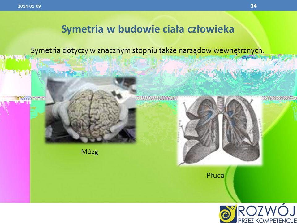 2014-01-09 34 Symetria w budowie ciała człowieka Symetria dotyczy w znacznym stopniu także narządów wewnętrznych. Mózg Płuca