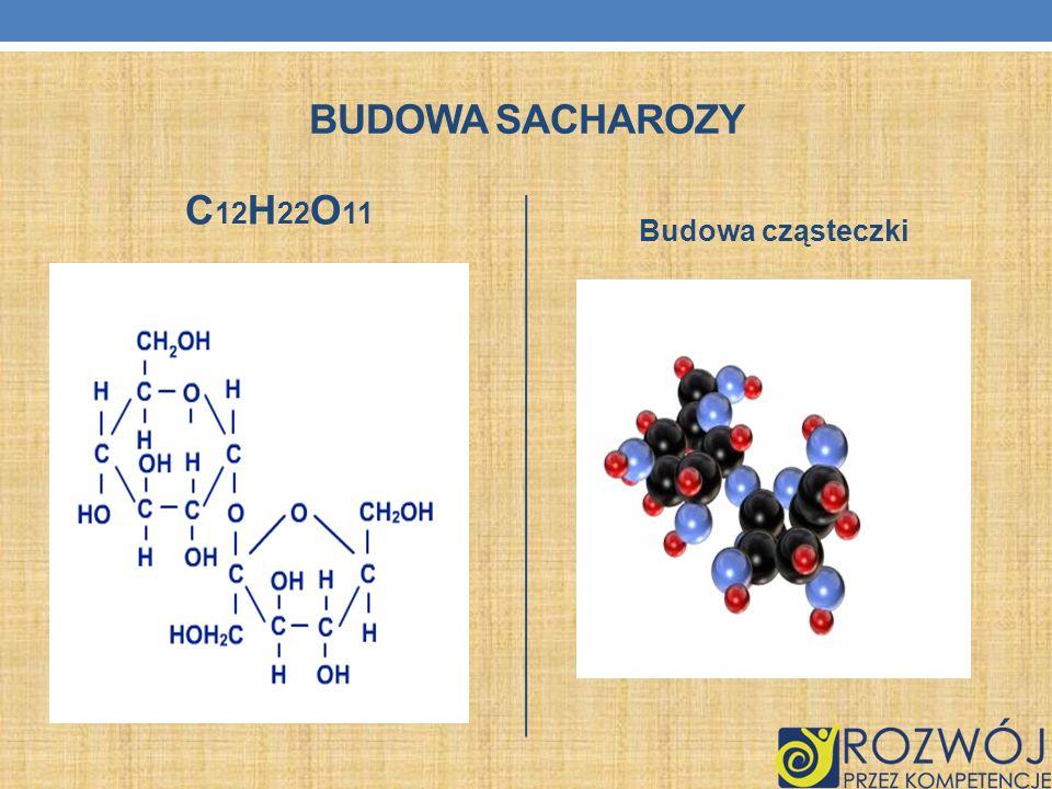 BUDOWA SACHAROZY C 12 H 22 O 11 Budowa cząsteczki