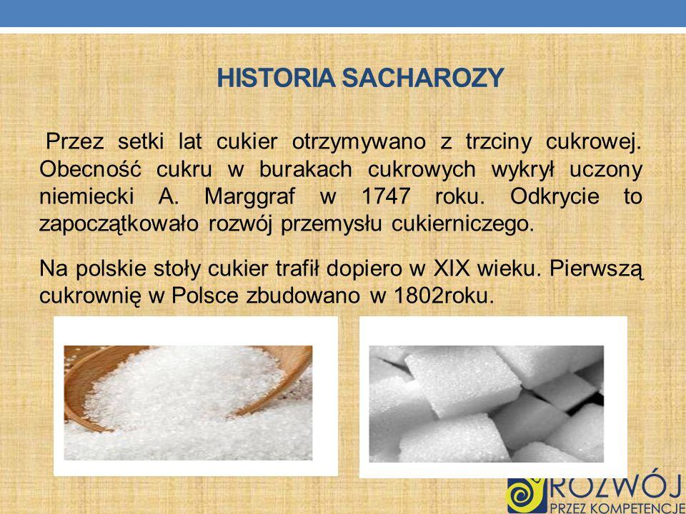 HISTORIA SACHAROZY Przez setki lat cukier otrzymywano z trzciny cukrowej. Obecność cukru w burakach cukrowych wykrył uczony niemiecki A. Marggraf w 17