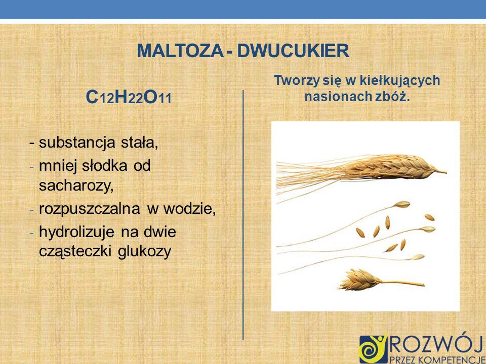 MALTOZA - DWUCUKIER C 12 H 22 O 11 - substancja stała, - mniej słodka od sacharozy, - rozpuszczalna w wodzie, - hydrolizuje na dwie cząsteczki glukozy
