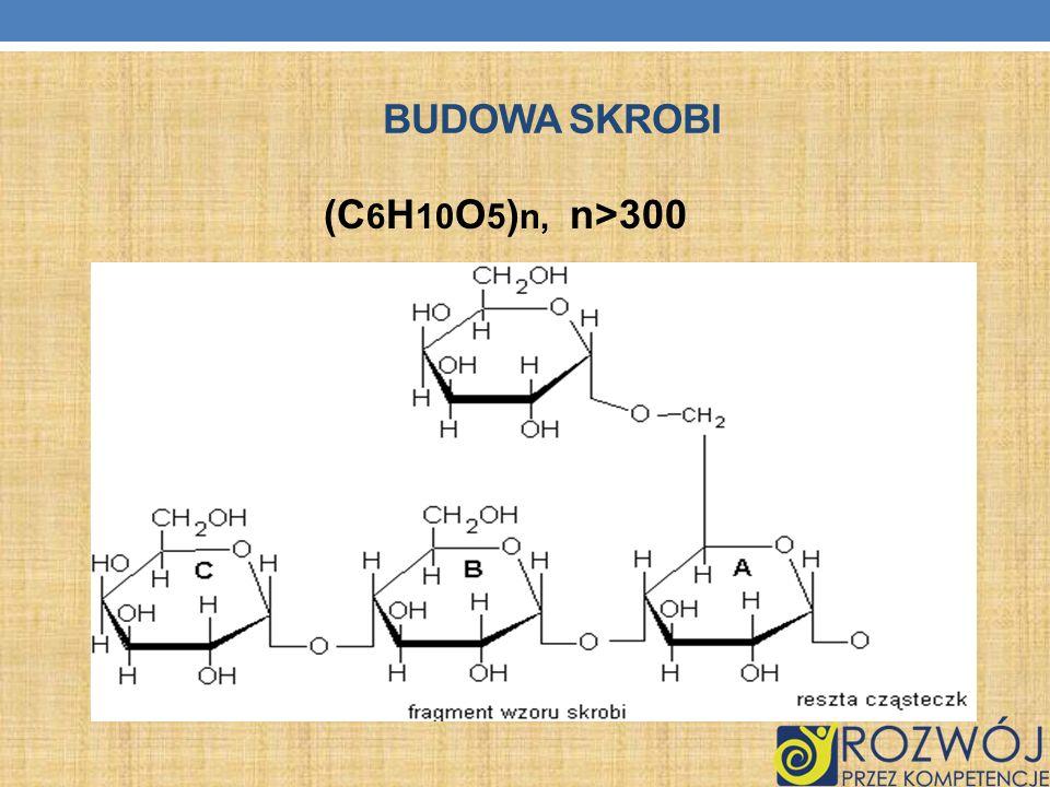 BUDOWA SKROBI (C 6 H 10 O 5 ) n, n>300