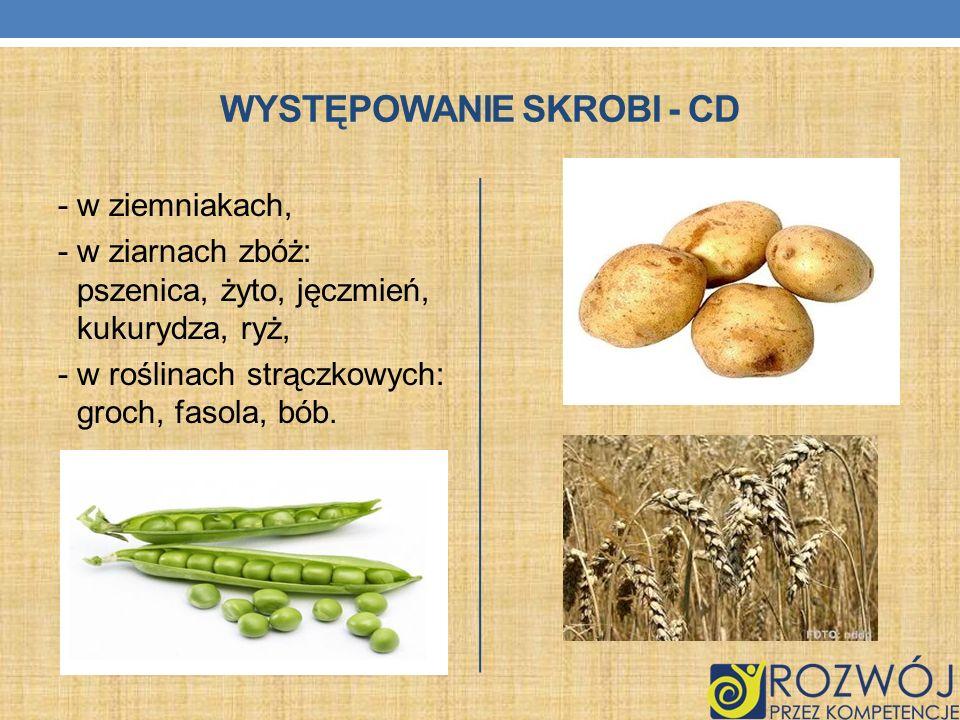 WYSTĘPOWANIE SKROBI - CD - w ziemniakach, - w ziarnach zbóż: pszenica, żyto, jęczmień, kukurydza, ryż, - w roślinach strączkowych: groch, fasola, bób.