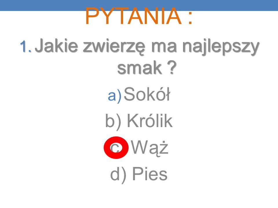 PYTANIA : 1. Jakie zwierzę ma najlepszy smak ? a) Sokół b) Królik c) Wąż d) Pies