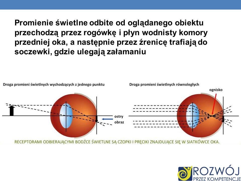Promienie świetlne odbite od oglądanego obiektu przechodzą przez rogówkę i płyn wodnisty komory przedniej oka, a następnie przez źrenicę trafiają do s