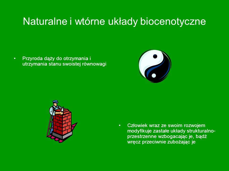 Naturalne i wtórne układy biocenotyczne Przyroda dąży do otrzymania i utrzymania stanu swoistej równowagi Człowiek wraz ze swoim rozwojem modyfikuje z