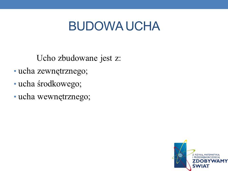BUDOWA UCHA Ucho zbudowane jest z: ucha zewnętrznego; ucha środkowego; ucha wewnętrznego;