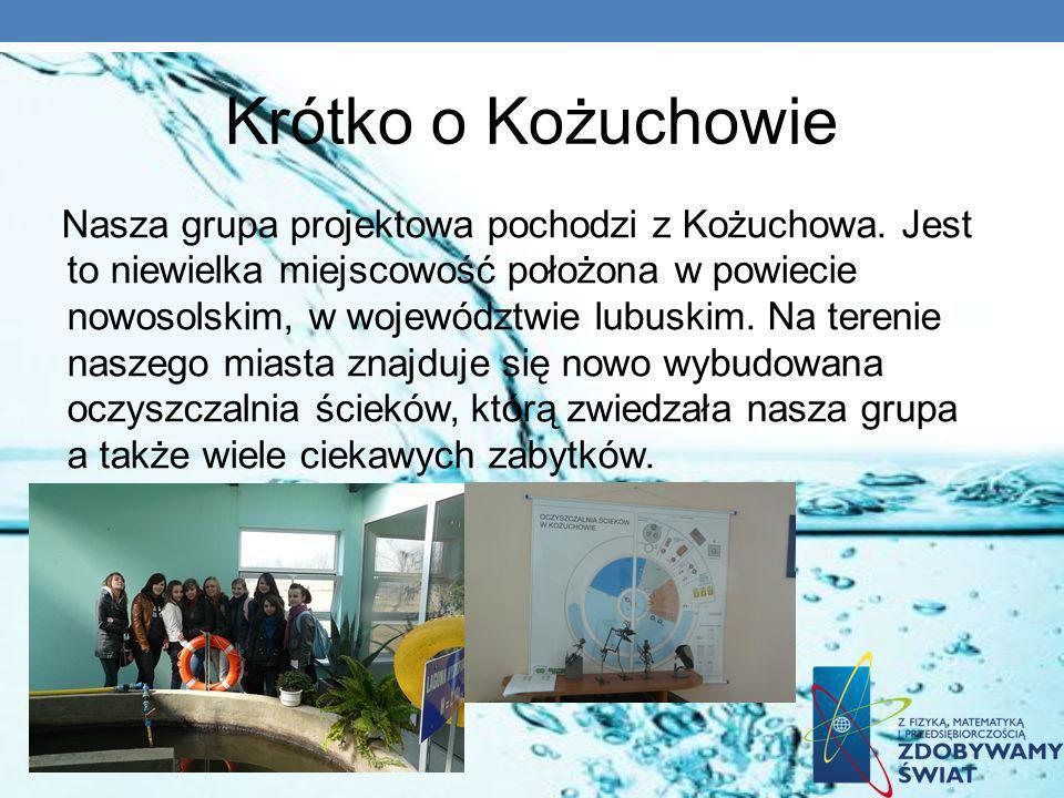 Krótko o Kożuchowie Nasza grupa projektowa pochodzi z Kożuchowa. Jest to niewielka miejscowość położona w powiecie nowosolskim, w województwie lubuski