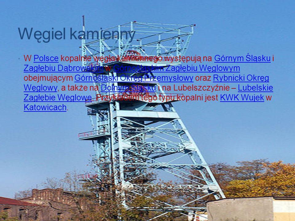 Węgiel kamienny W Polsce kopalnie węgla kamiennego występują na Górnym Śląsku i Zagłębiu Dąbrowskim w Górnośląskim Zagłębiu Węglowym obejmującym Górno