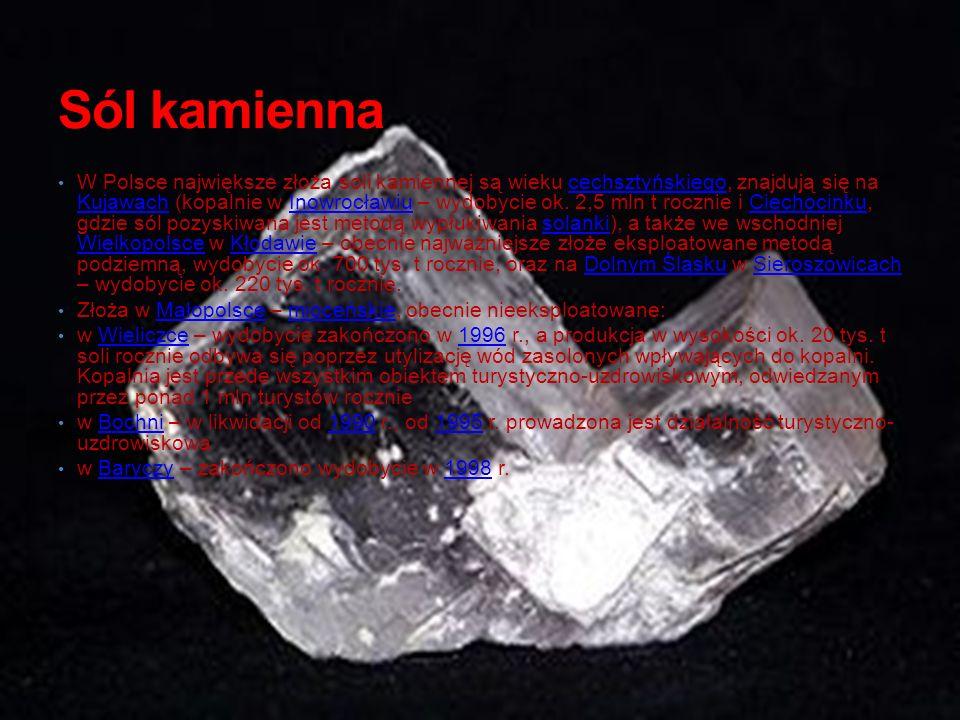 Sól kamienna W Polsce największe złoża soli kamiennej są wieku cechsztyńskiego, znajdują się na Kujawach (kopalnie w Inowrocławiu – wydobycie ok. 2,5