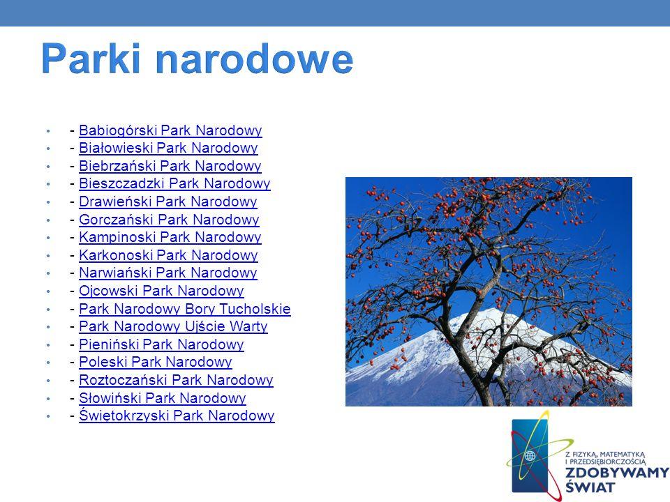 - Babiogórski Park NarodowyBabiogórski Park Narodowy - Białowieski Park NarodowyBiałowieski Park Narodowy - Biebrzański Park NarodowyBiebrzański Park