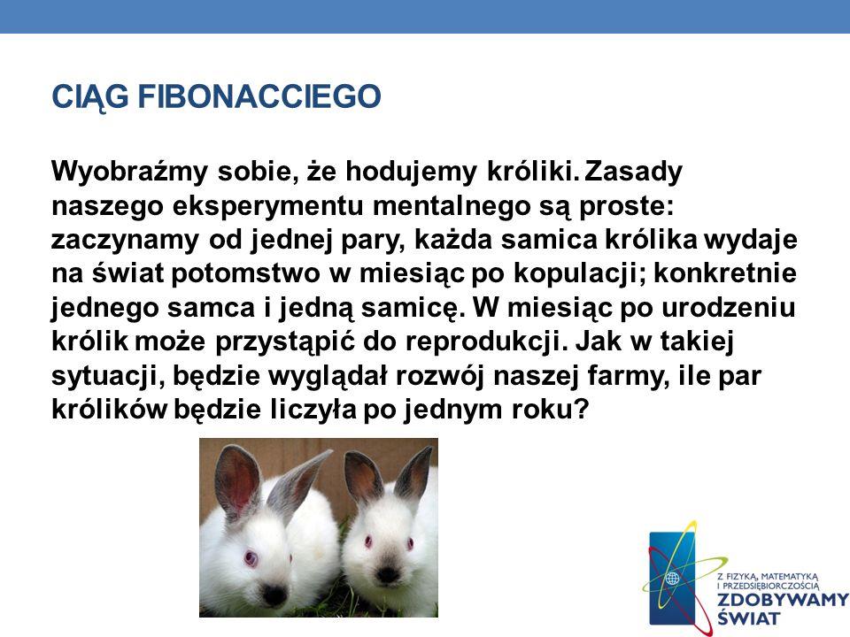 CIĄG FIBONACCIEGO Wyobraźmy sobie, że hodujemy króliki. Zasady naszego eksperymentu mentalnego są proste: zaczynamy od jednej pary, każda samica króli
