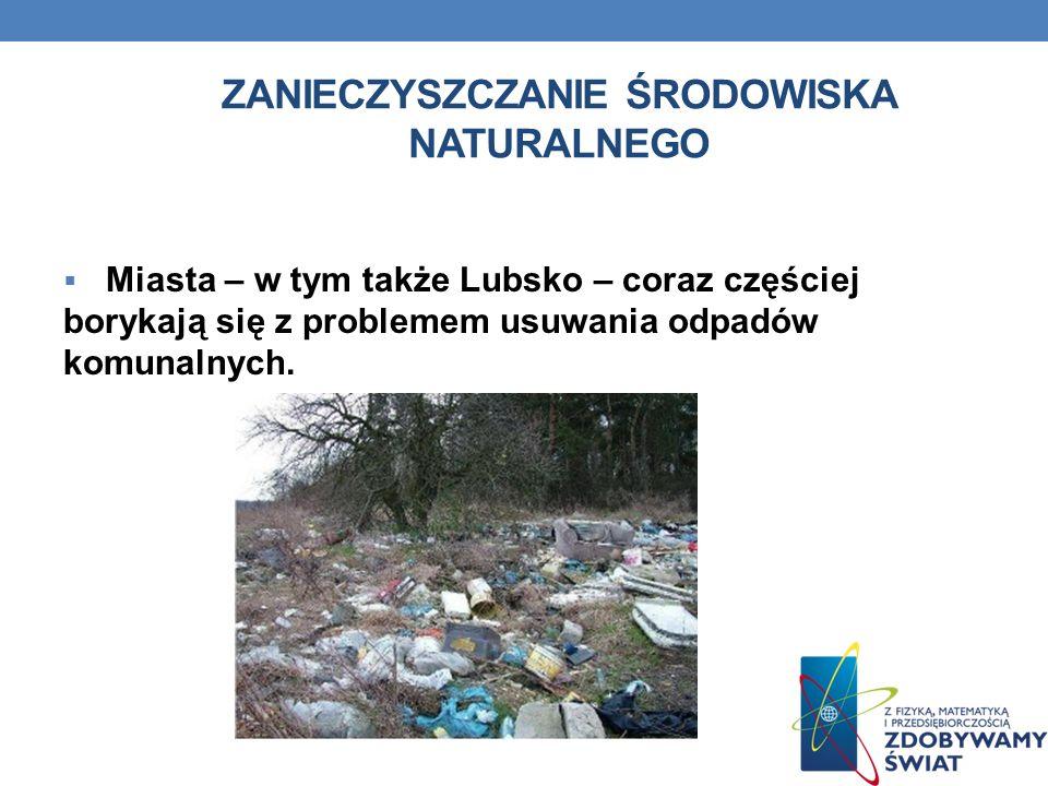ZANIECZYSZCZANIE ŚRODOWISKA NATURALNEGO Miasta – w tym także Lubsko – coraz częściej borykają się z problemem usuwania odpadów komunalnych.