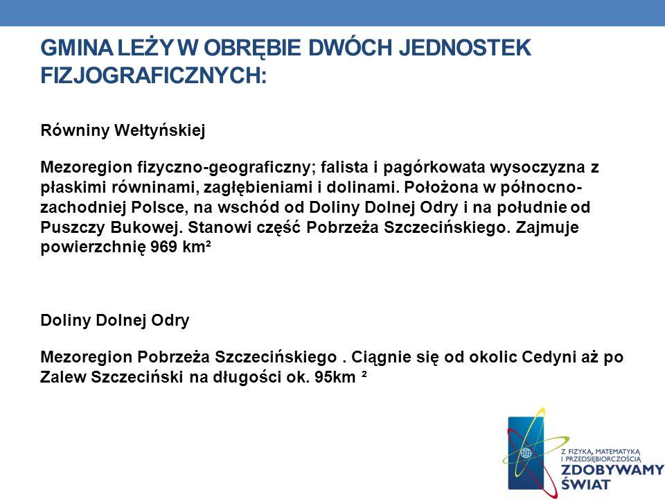 GMINA LEŻY W OBRĘBIE DWÓCH JEDNOSTEK FIZJOGRAFICZNYCH: Równiny Wełtyńskiej Mezoregion fizyczno-geograficzny; falista i pagórkowata wysoczyzna z płaski