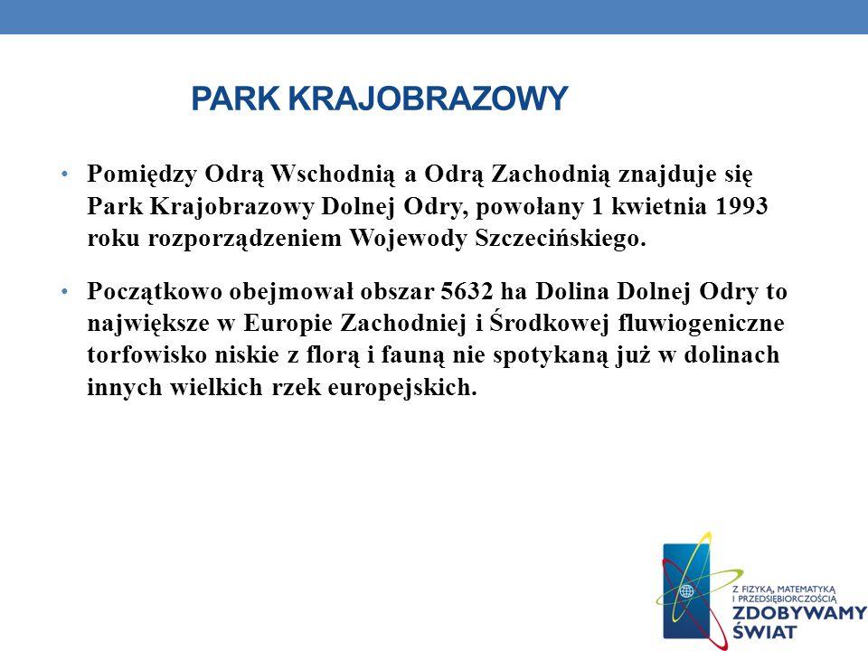PARK KRAJOBRAZOWY Pomiędzy Odrą Wschodnią a Odrą Zachodnią znajduje się Park Krajobrazowy Dolnej Odry, powołany 1 kwietnia 1993 roku rozporządzeniem W