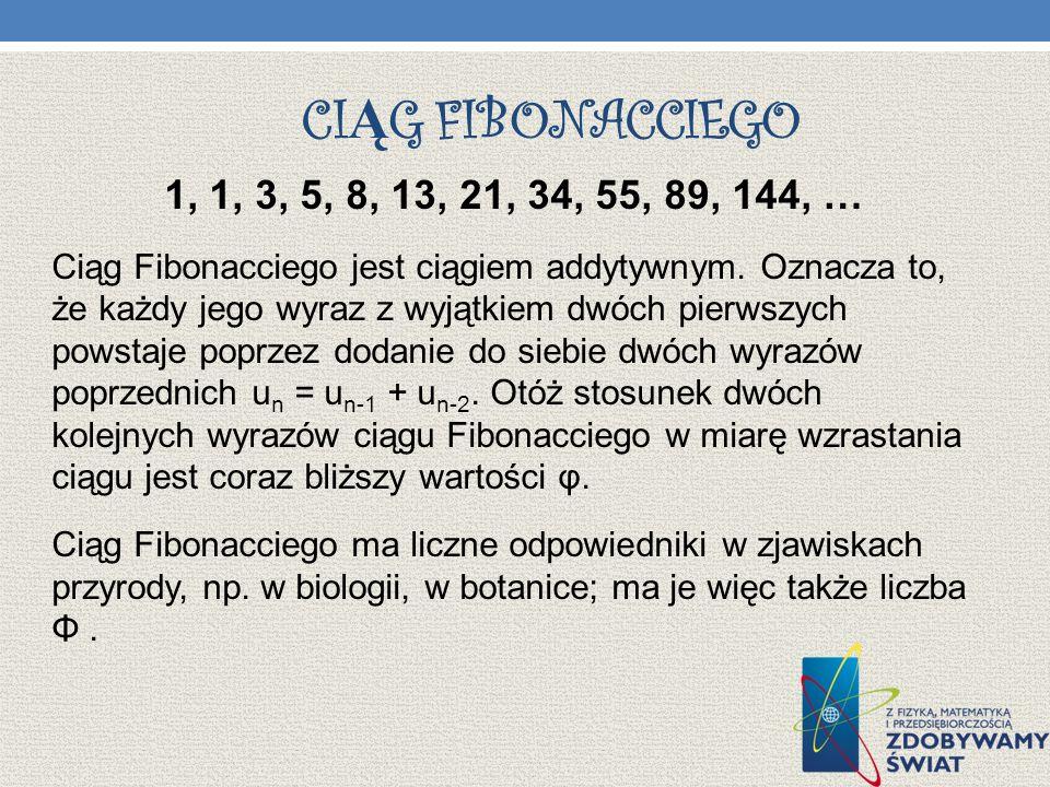 CI Ą G FIBONACCIEGO 1, 1, 3, 5, 8, 13, 21, 34, 55, 89, 144, … Ciąg Fibonacciego jest ciągiem addytywnym. Oznacza to, że każdy jego wyraz z wyjątkiem d
