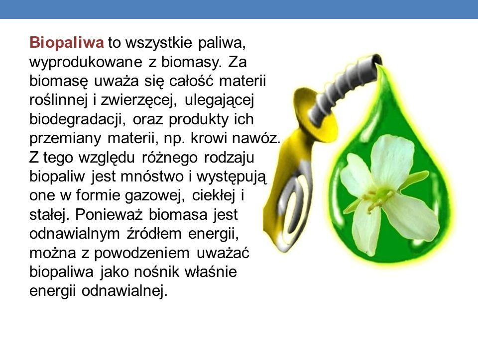 Biopaliwa to wszystkie paliwa, wyprodukowane z biomasy. Za biomasę uważa się całość materii roślinnej i zwierzęcej, ulegającej biodegradacji, oraz pro