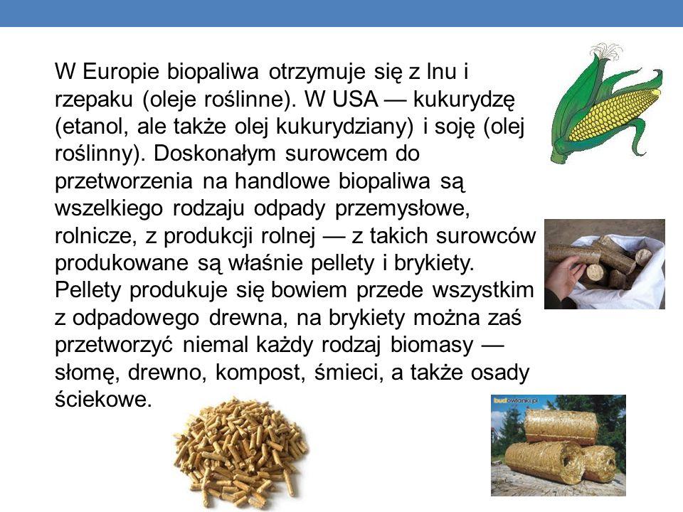W Europie biopaliwa otrzymuje się z lnu i rzepaku (oleje roślinne). W USA kukurydzę (etanol, ale także olej kukurydziany) i soję (olej roślinny). Dosk