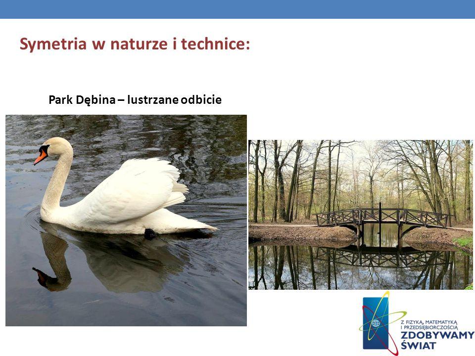 Symetria w naturze i technice: Park Dębina – lustrzane odbicie
