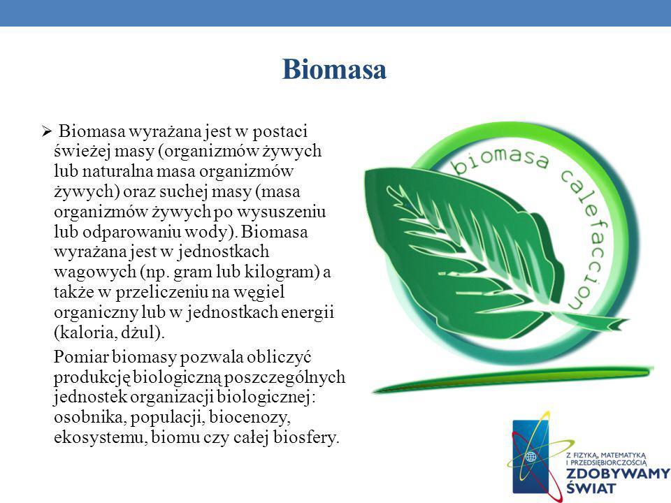 Biomasa wyrażana jest w postaci świeżej masy (organizmów żywych lub naturalna masa organizmów żywych) oraz suchej masy (masa organizmów żywych po wysu