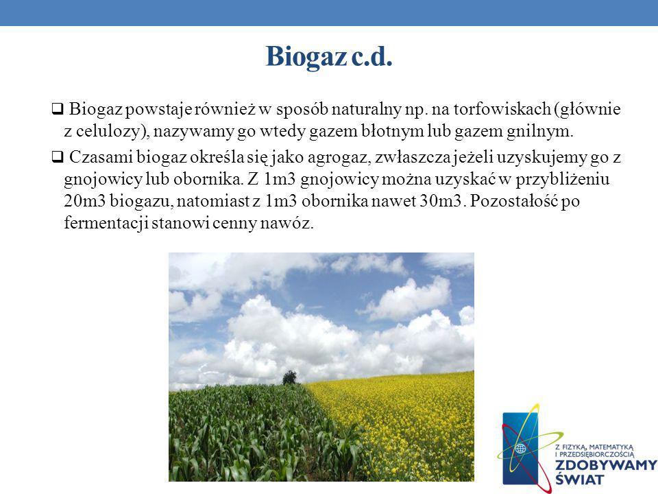 Biogaz powstaje również w sposób naturalny np. na torfowiskach (głównie z celulozy), nazywamy go wtedy gazem błotnym lub gazem gnilnym. Czasami biogaz