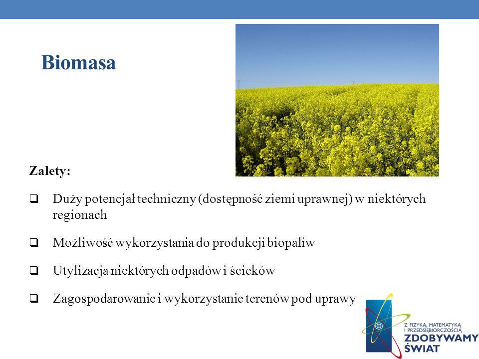 Biomasa Zalety: Duży potencjał techniczny (dostępność ziemi uprawnej) w niektórych regionach Możliwość wykorzystania do produkcji biopaliw Utylizacja