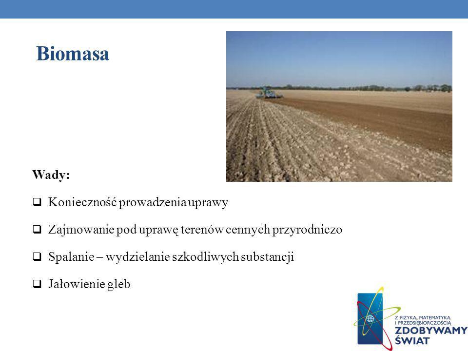 Wady: Konieczność prowadzenia uprawy Zajmowanie pod uprawę terenów cennych przyrodniczo Spalanie – wydzielanie szkodliwych substancji Jałowienie gleb