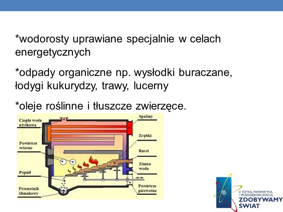 *wodorosty uprawiane specjalnie w celach energetycznych *odpady organiczne np. wysłodki buraczane, łodygi kukurydzy, trawy, lucerny *oleje roślinne i